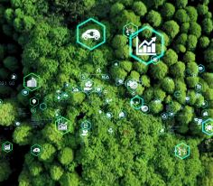 Cleantech and artificial intelligence